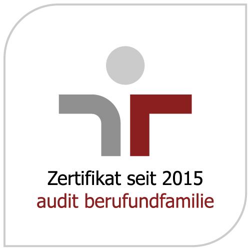 Logo Audit
