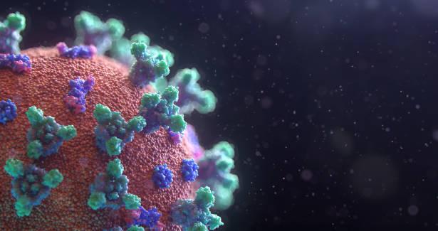 Photo by Fusion Medical Animation on Unsplash